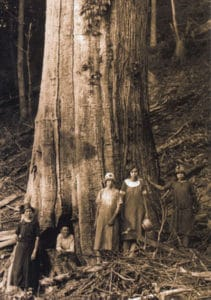 The Shelton Family next to an American Chestnut (Castanea dentata) in the Great Smoky Mountains National Park